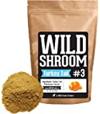 Turkey Tail Mushroom Extract by Wild Foods - Trametes Versicolor - 10:1 Water-Extracted Fruiting Bodies Only - No Grain/Mycelium - Nootropic Powder (2 ounce)