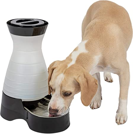 PetSafe Healthy Pet Gravity Food or Water Station