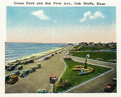 Amazon com: Oak Bluffs, Massachusetts - General View of Ocean Park