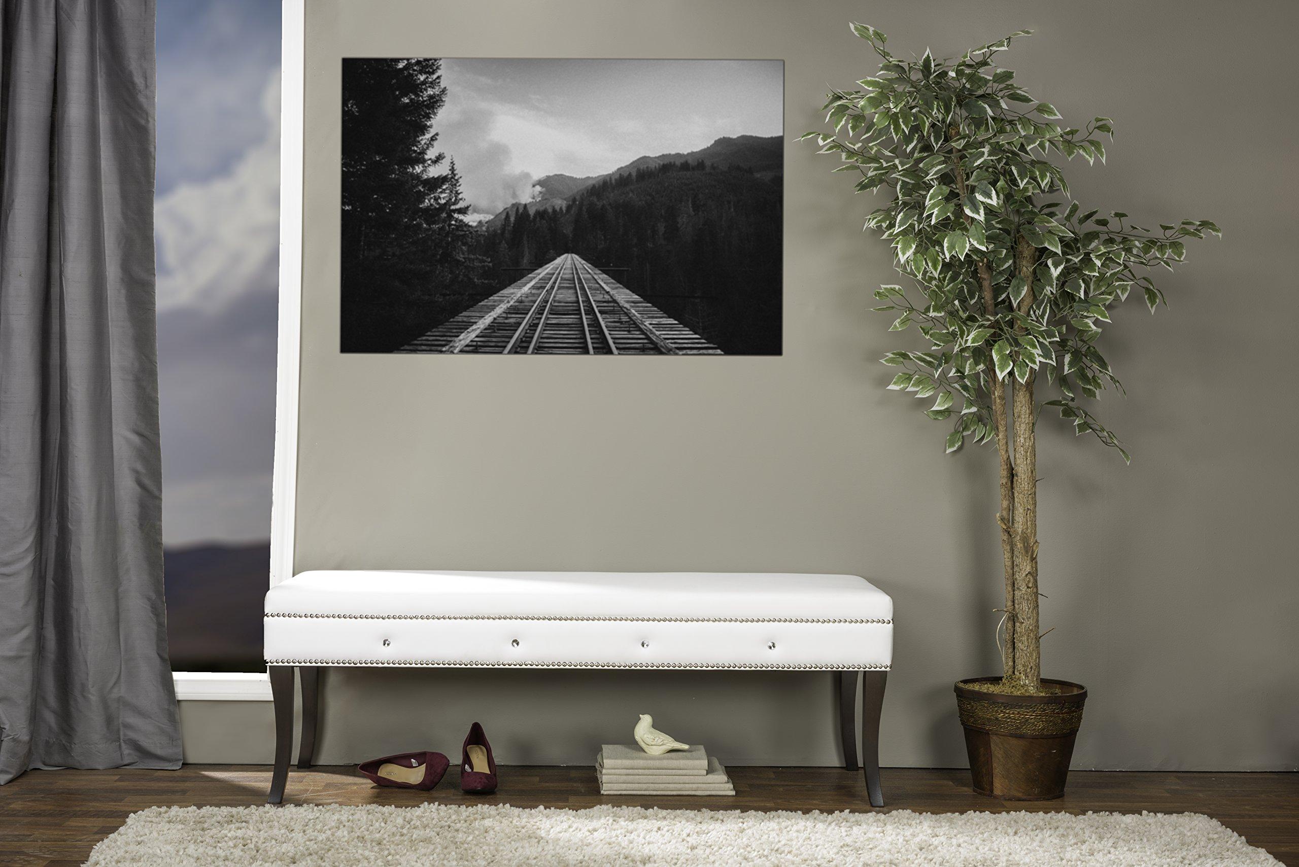 Baxton Studio Tavignano Wood and Leather Contemporary Bench, White