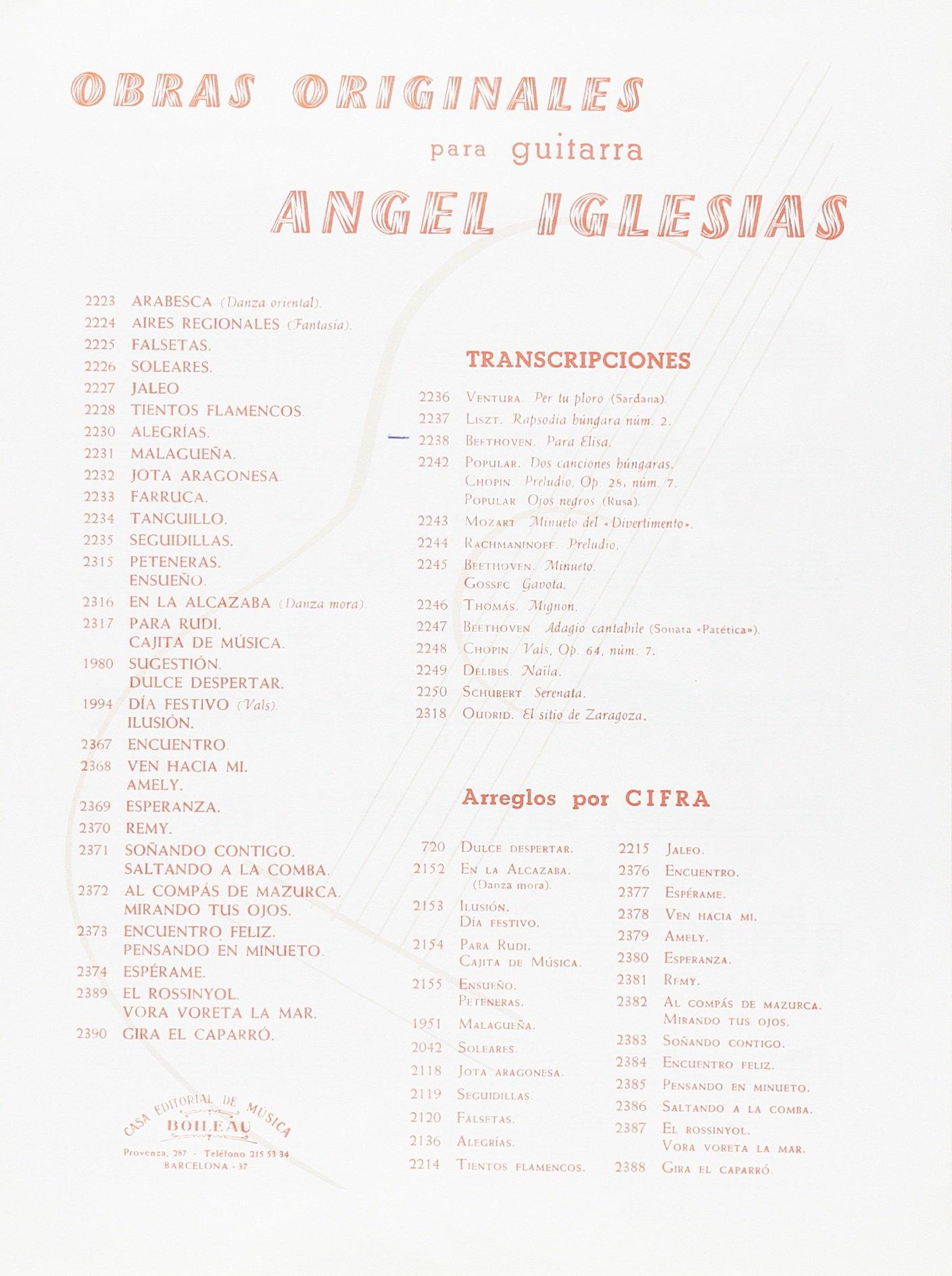 Para Elisa: Amazon.es: BEETHOVEN, Ludwig van, IGLESIAS, Ángel: Libros