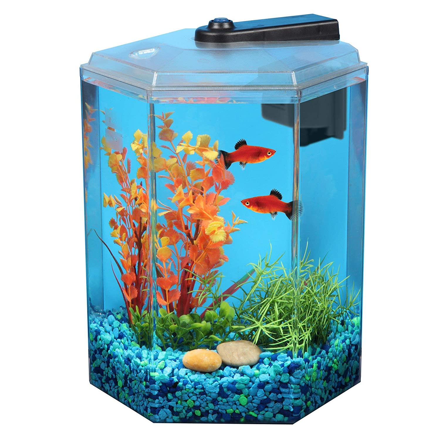 Top 25 Fish Tank Coffee Tables For Sale 2020