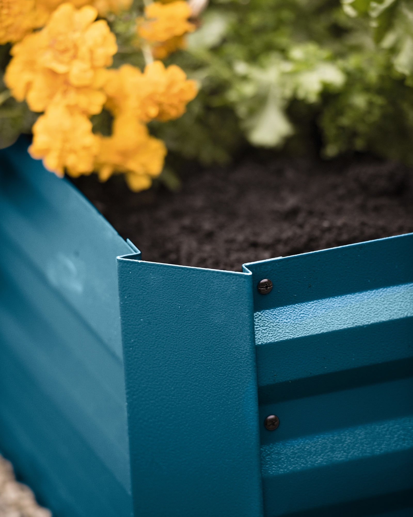 """Gardener's Supply Company Corrugated Metal Powder-Coated Steel Raised Bed, 34"""" x 68"""" Blue 2 STYLISH and STURDY- Richly hued raised bed made from sturdy yet lightweight powder-coated steel complements your landscape and showcases plants. BENEFITS- Extra deep to accommodate large plants. Lightly textured surface. Raised beds are easier to plant and tend than in-ground beds, with fewer pests and weeds. MATERIALS and MEASUREMENTS- Powder-coated steel - 68"""" L x 35-1/4"""" W x 11-3/4"""" H - Holds 17 cu. ft. of soil"""