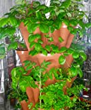 LARGE Vertical Gardening Stackable Planters by