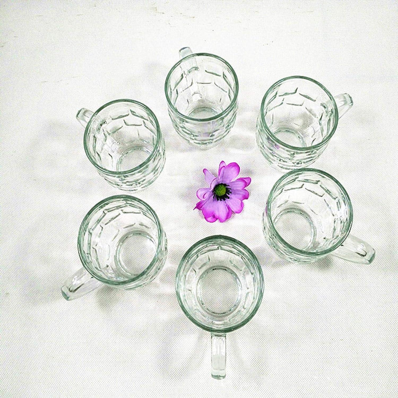 HNCZ Juego de 6 Tazas de piña con Asas, jarras de Cerveza de Vidrio