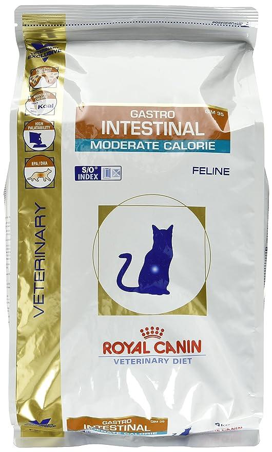 ROYAL CANIN Cat Gastro Intestinal Moderado Calorías Fine Gato Alimento 0,4 kg: Amazon.es: Productos para mascotas