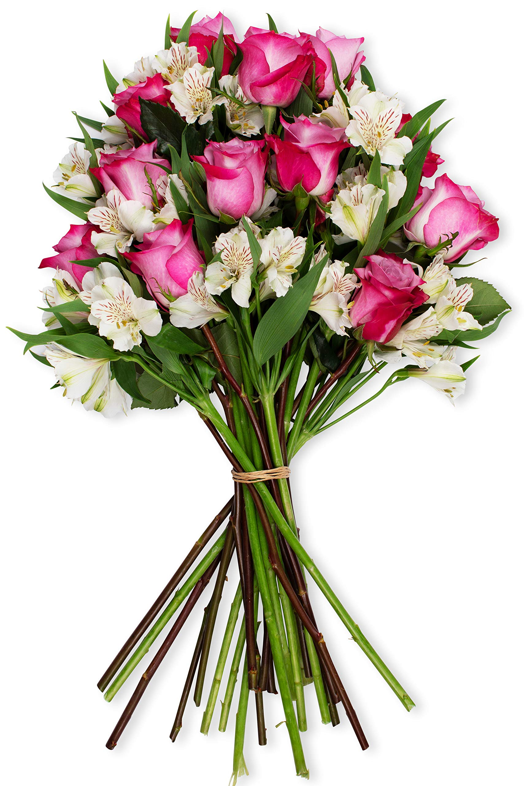 Amazon Com Benchmark Bouquets Charming Roses And