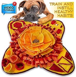 Petriz - Snuffle Pad Dog Feeding Mat Anti Slip Pet Activity Foraging Mat Nosework Blanket Feeding Training Mat Snuffle Mat for Dogs Slow Feeding Toys