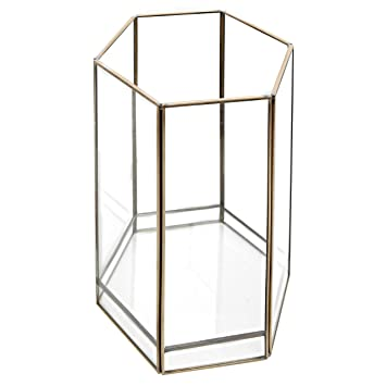Amazon.com: Pentagon Shape Glass Plant Terrarium with Brass Trim ...