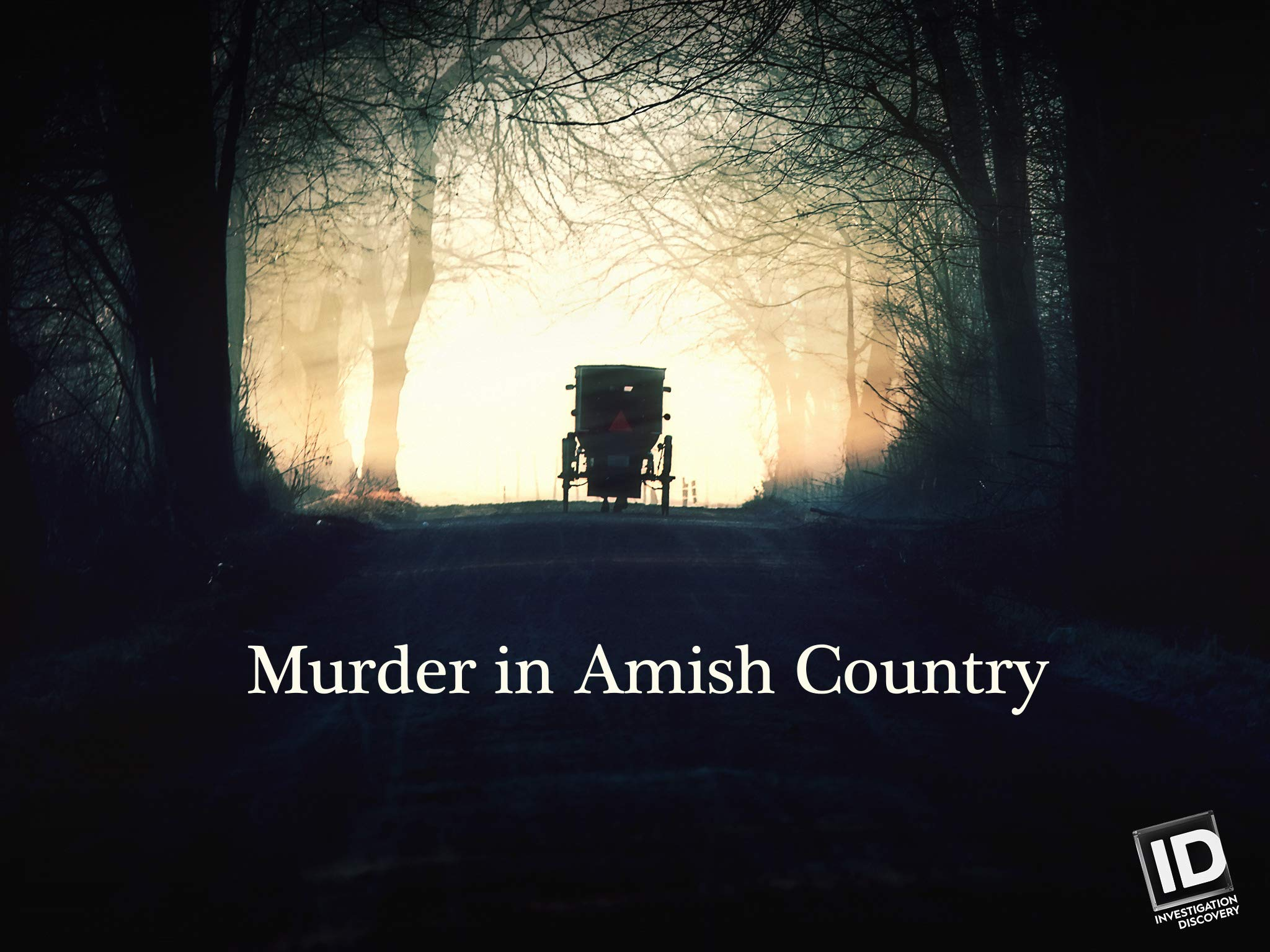 Watch Murder In Amish Country Season 1 Prime Video