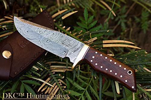 14 5 18 DKC-500 Cougar Damascus Steel Bowie Hunting Knife 9 Long, 4 Blade 7.4 oz Rosewood Handle