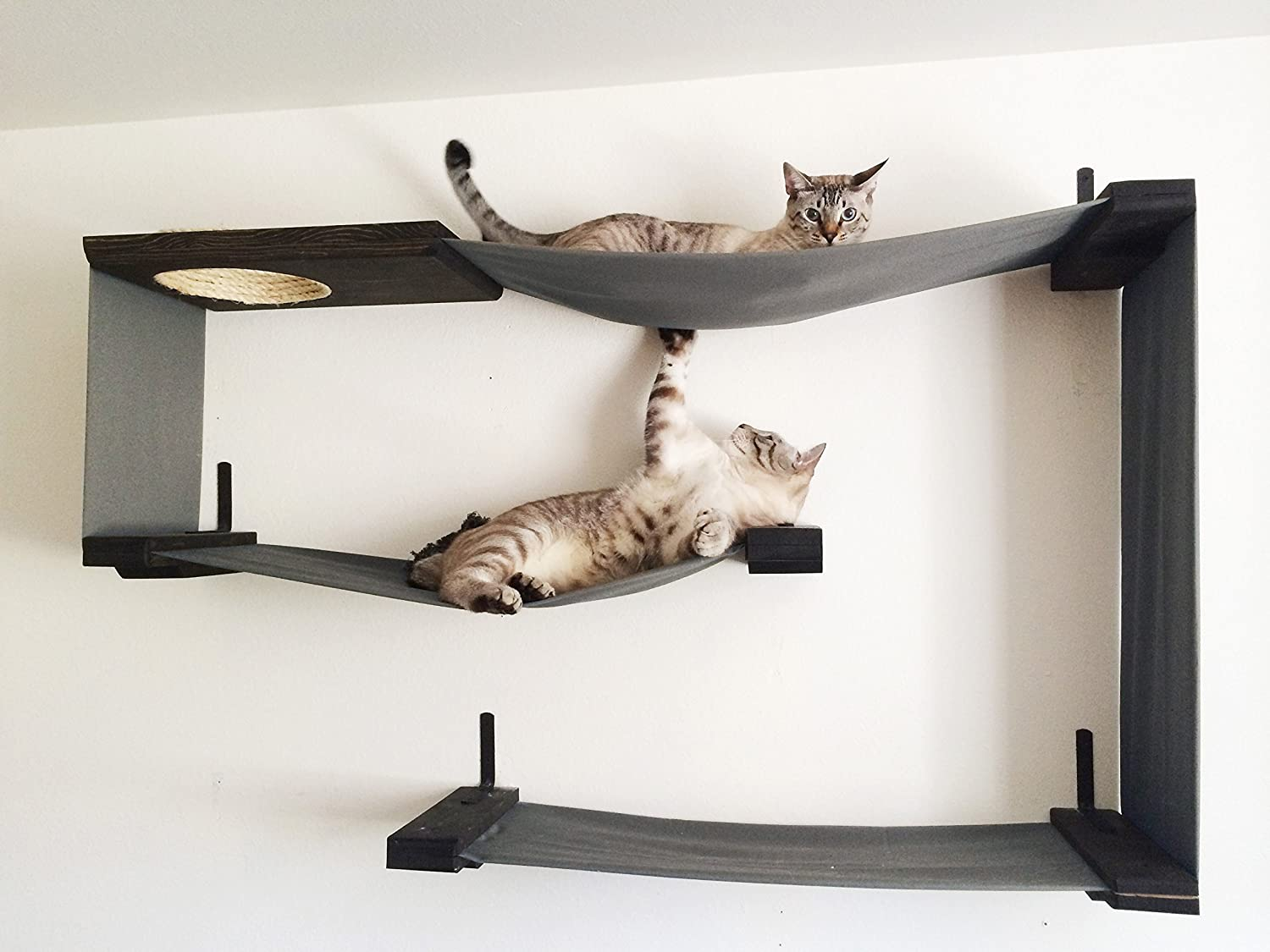 top 10 cat shelves and wall perches how to spoil your feline friend rh catwallshelves net