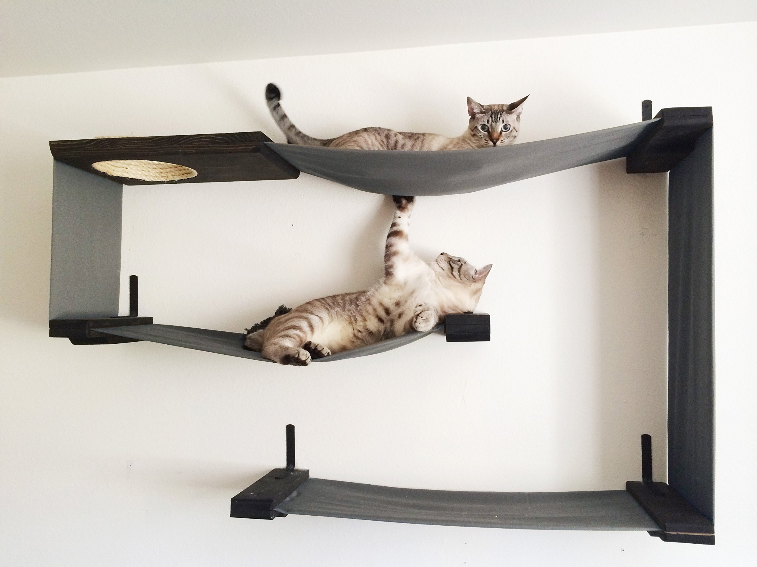CatastrophiCreations  Fabric Cat Maze Multiple-Level Hammock Lounger Wall-Mounted Cat Tree
