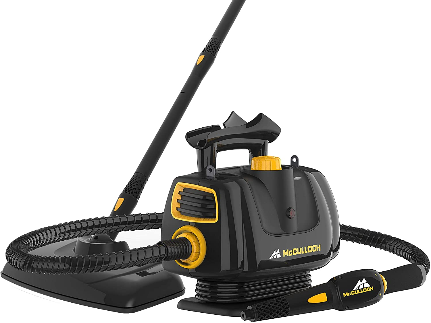 steam cleaner for bed bugs