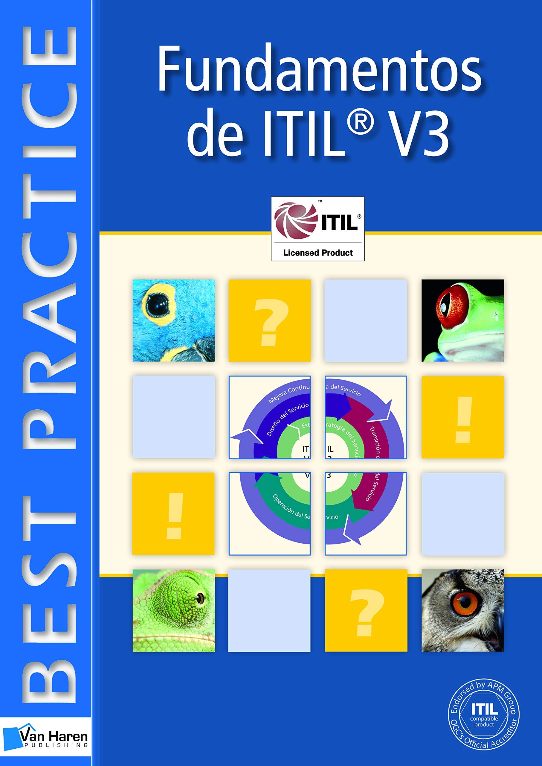 Foundations of IT Service Management Based on ITIL: Volume 3 (Best Practice Series) Tapa blanda Jan Van Bon Arjen de Jong Axel Kolthof Mike Pieper