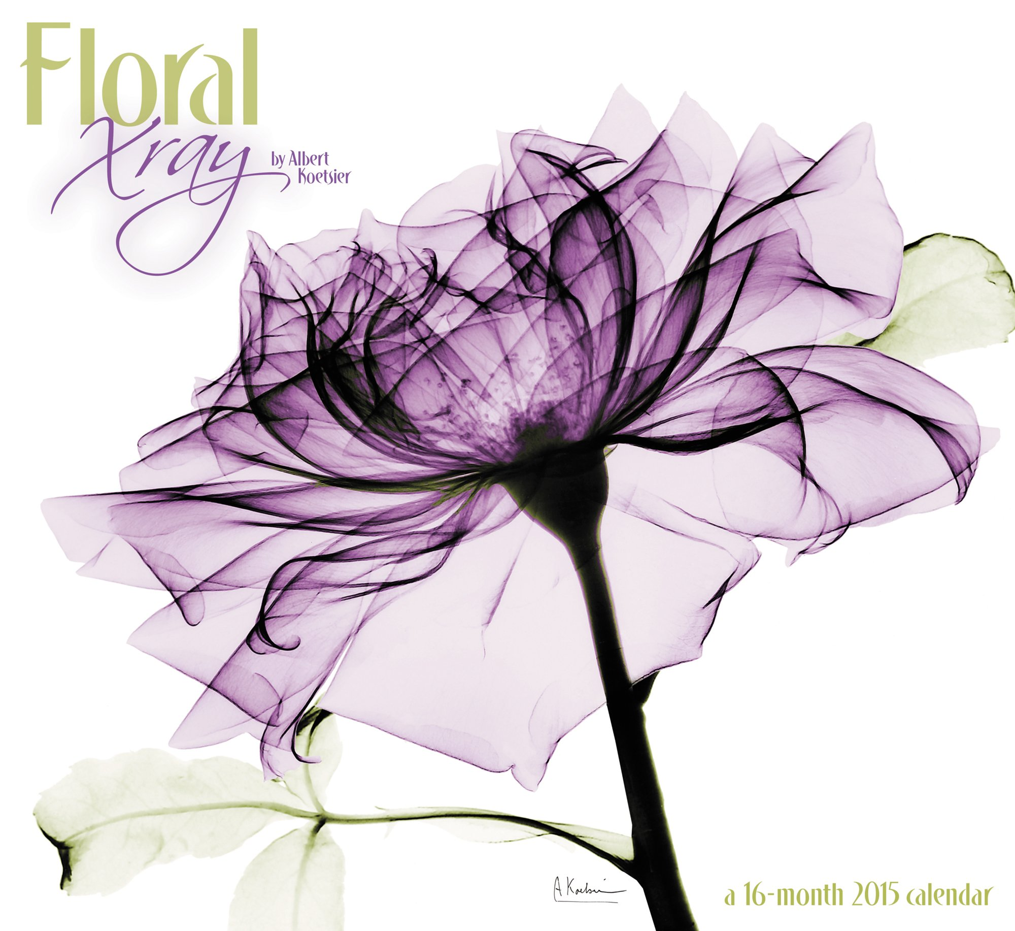 Floral X ray Wall Calendar Mead