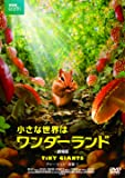 小さな世界はワンダーランド/劇場版 [DVD]