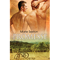 Promesse (Italian Edition) book cover