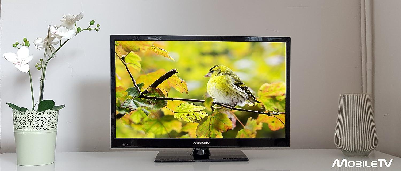TV TNT UHD/4 K LED 19 47 cm 12/24 V garantía 3 años – Bluetooth – Gran Angular: Amazon.es: Electrónica
