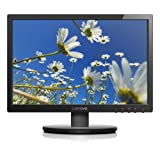 Amazon Price History for:Lenovo 19.5-Inch WXGA+ LED-Lit 16:9 Widescreen Monitor (65BAACC1US)