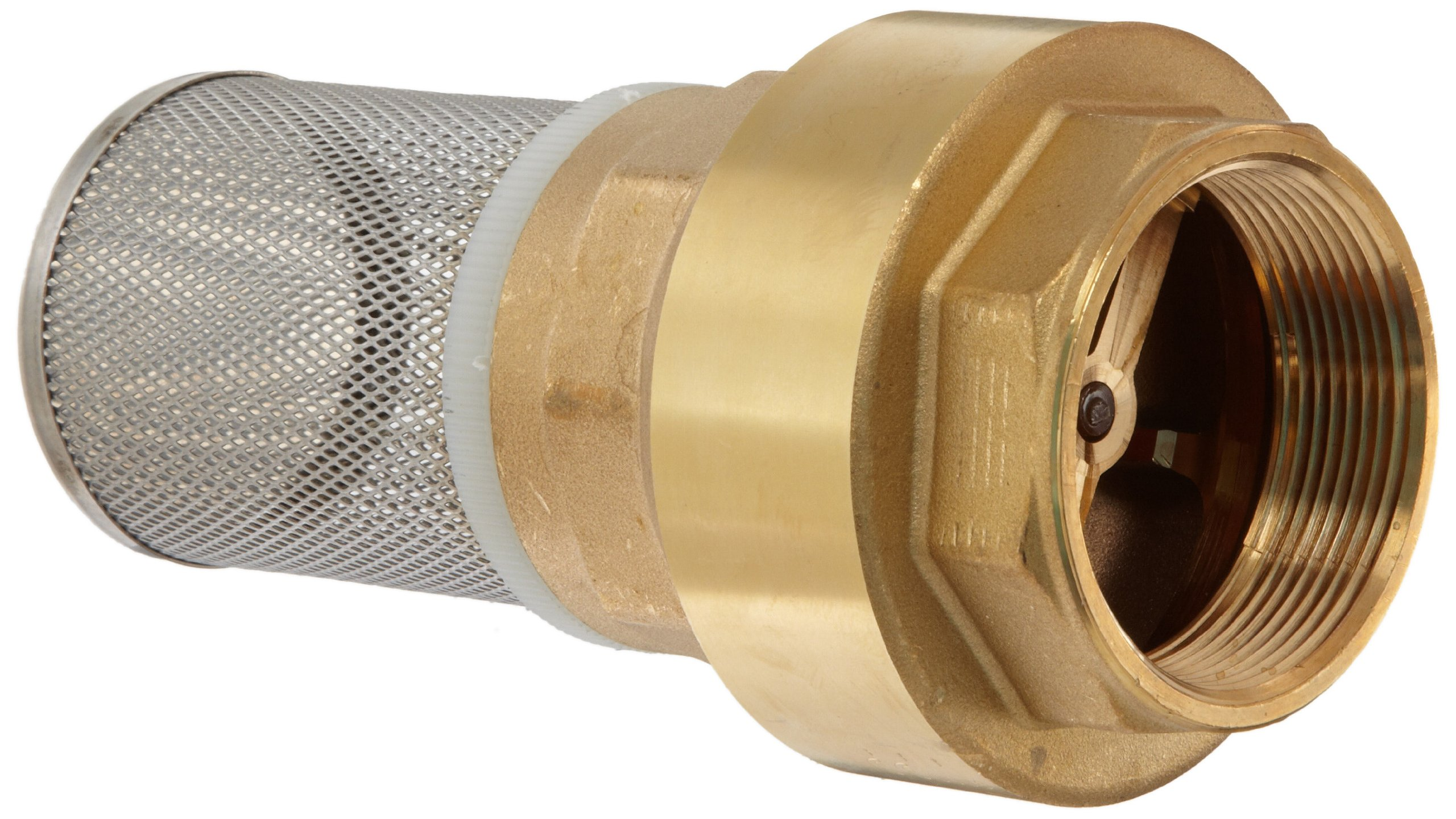 Dixon BVFS35 Brass Hose Fitting, Strainer with Spring Loaded Check Valves, 3'' Size