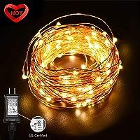 Ylife 33Ft 100 LED Strings Light Deals