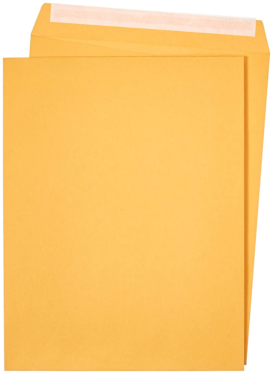 AmazonBasics Catalog Envelopes, Peel & Seal, 10 x 13 Inch, Brown Kraft, 100-Pack