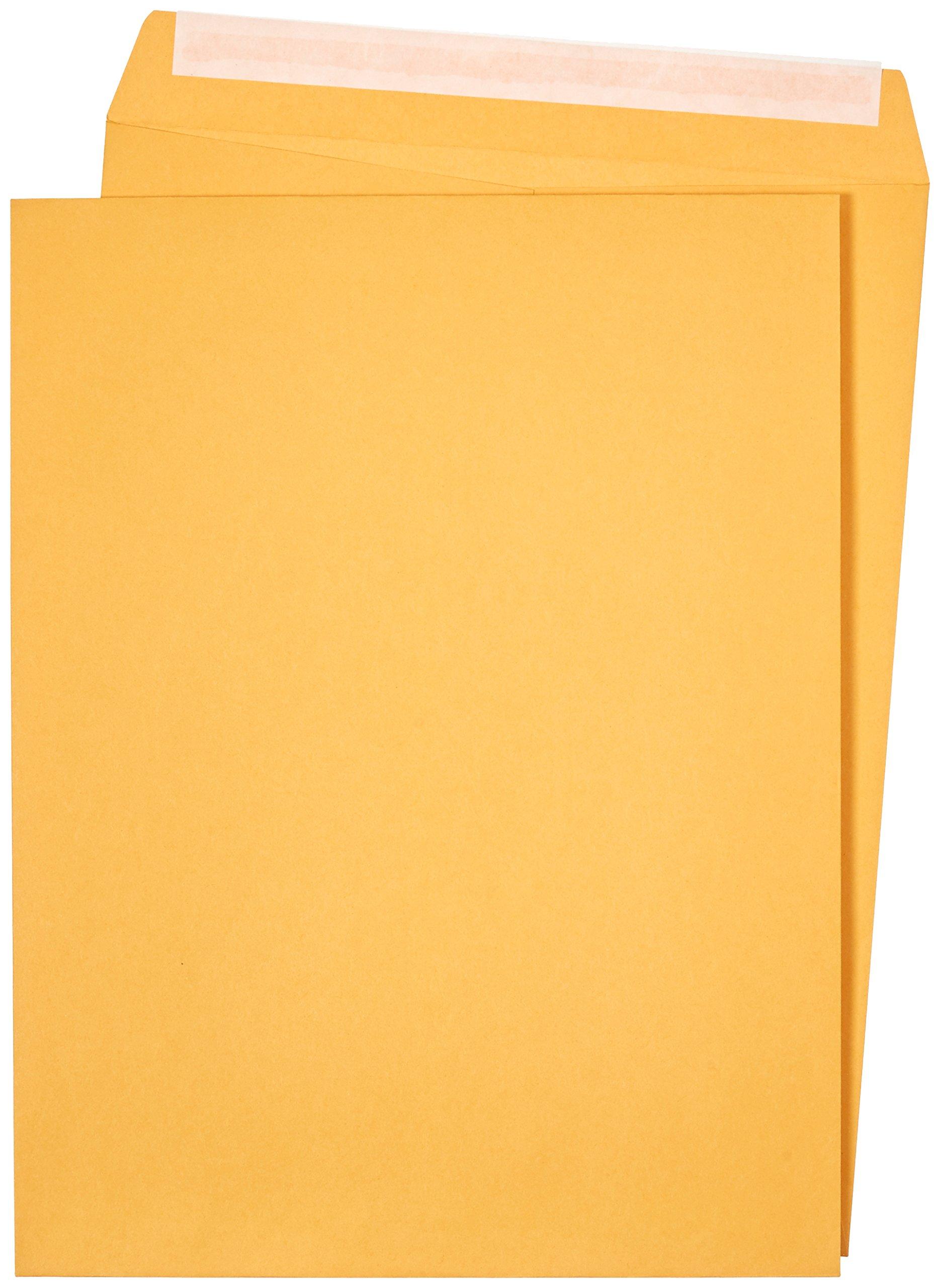 AmazonBasics Catalog Envelopes, Peel & Seal, 10 x 13 Inch, Brown Kraft, 100-Pack