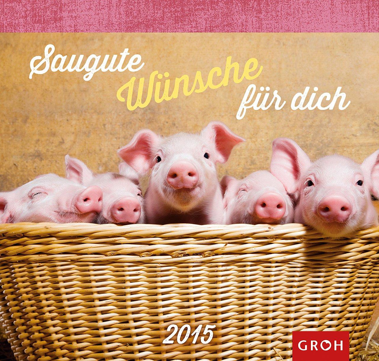 Saugute Wünsche für dich 2015