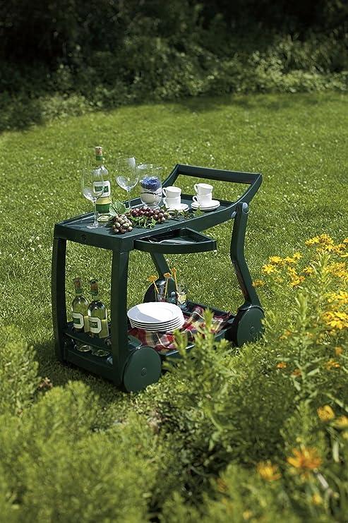 Best 18480030 camarera para comida - Camareras para comida (Rectangular, Verde, De plástico