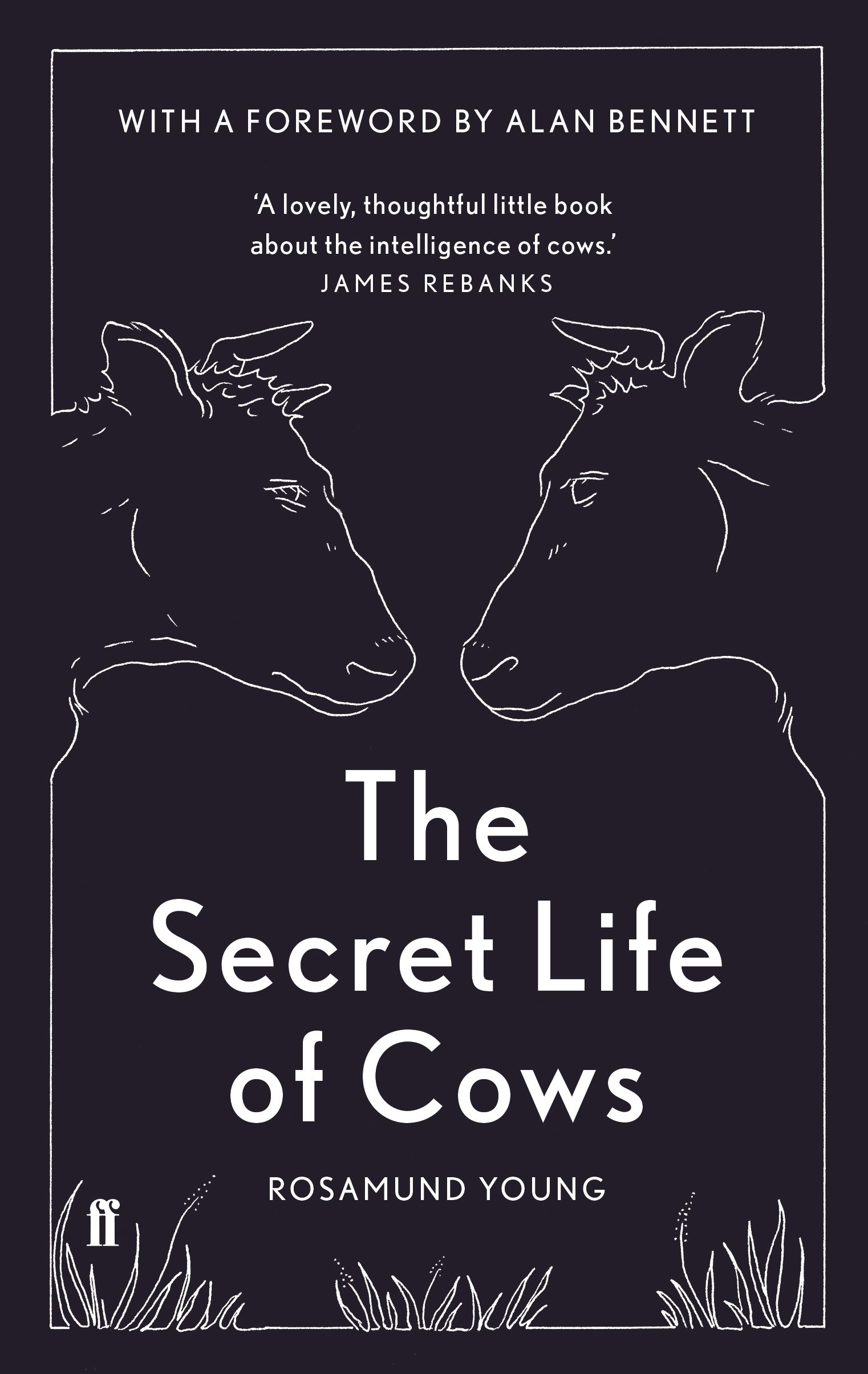 Image result for secret life of cows