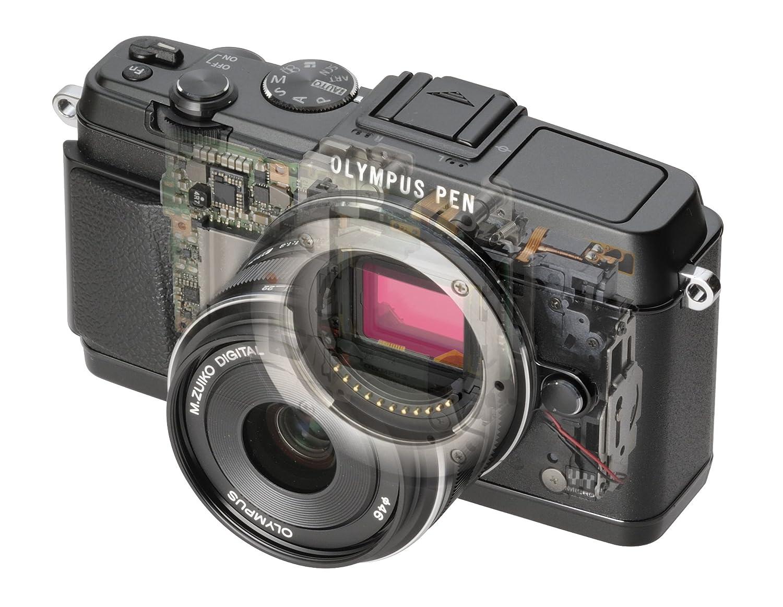 Что такое беззеркальный фотоаппарат