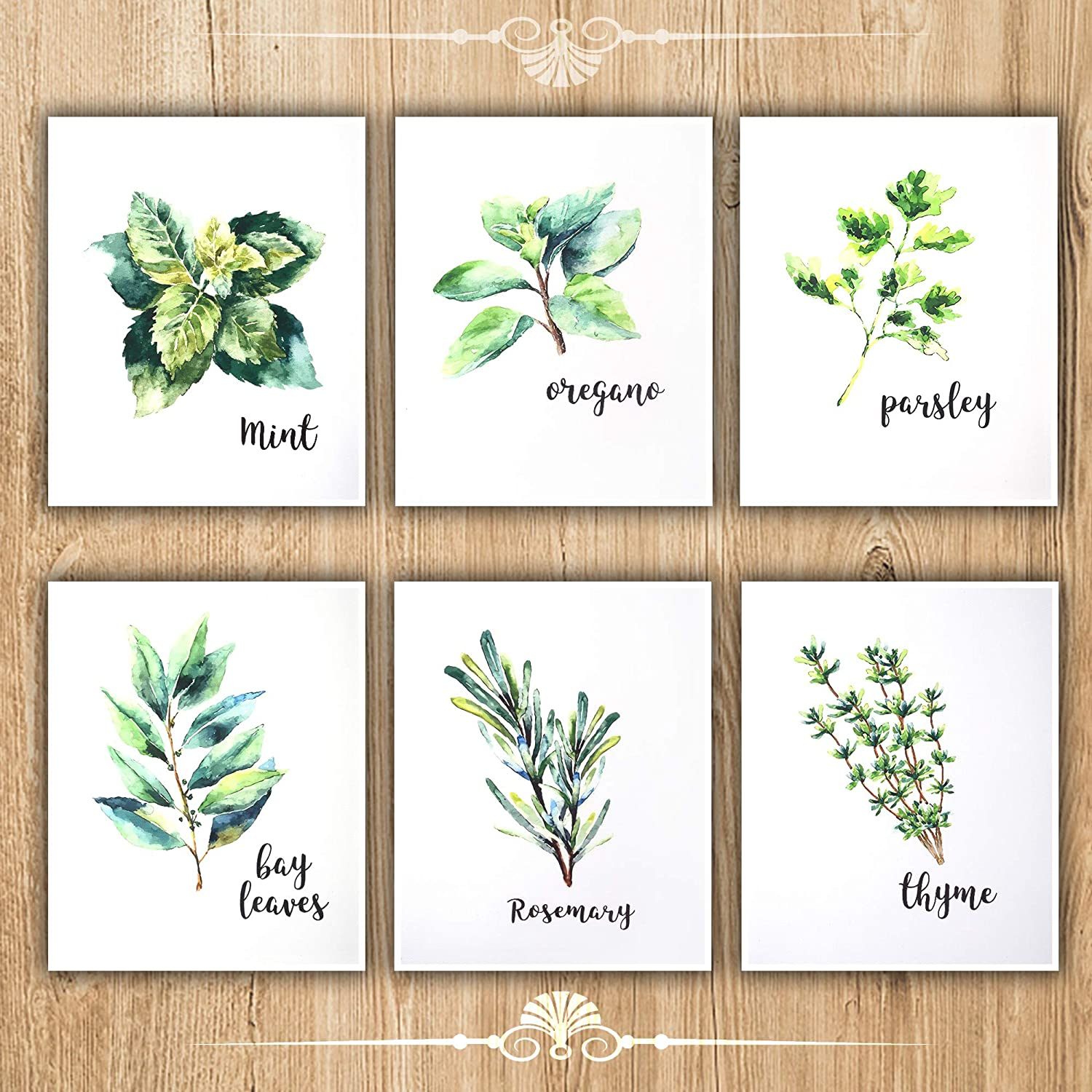 FELIMAI Kitchen Herbs Art Prints,Canvas Prints Wall Art,Canvas Art Set, 12x16s of 6,Unframed Wall Art Prints Wall Decor.