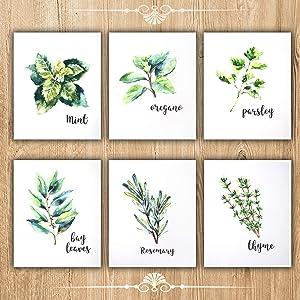 FELIMAI Kitchen Herbs Art Prints,Canvas Prints Wall Art,Canvas Art Set, 12x16s of 6,Unframed Wall Art Prints Wall Decor.