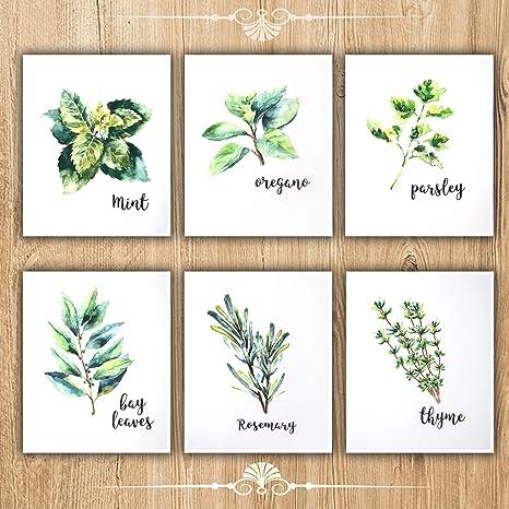 Kitchen Decoration Herbs Farmhouse Decor Botanical Leaf Decor Garden Leaf Imprint Cooking Art Rosemary Ornaments Plant Fossil