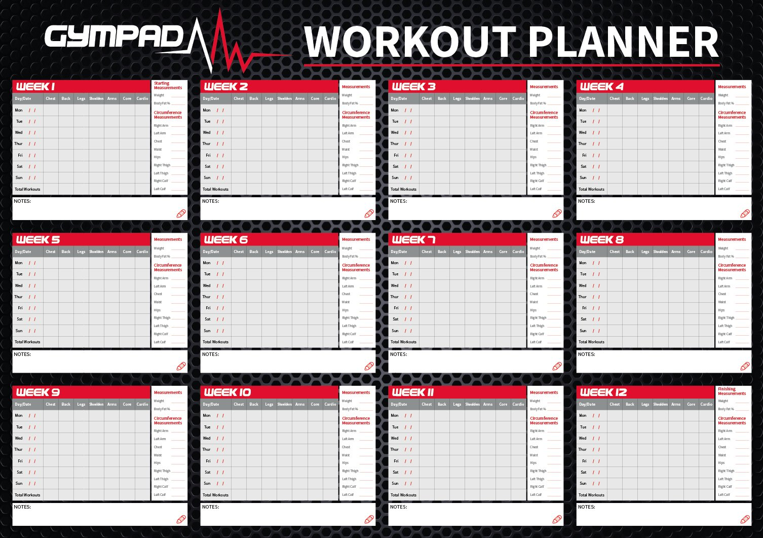 GymPad 12 Week Fitness Workout Planner – Premium Quality 16in x 23in Wall Chart Poster