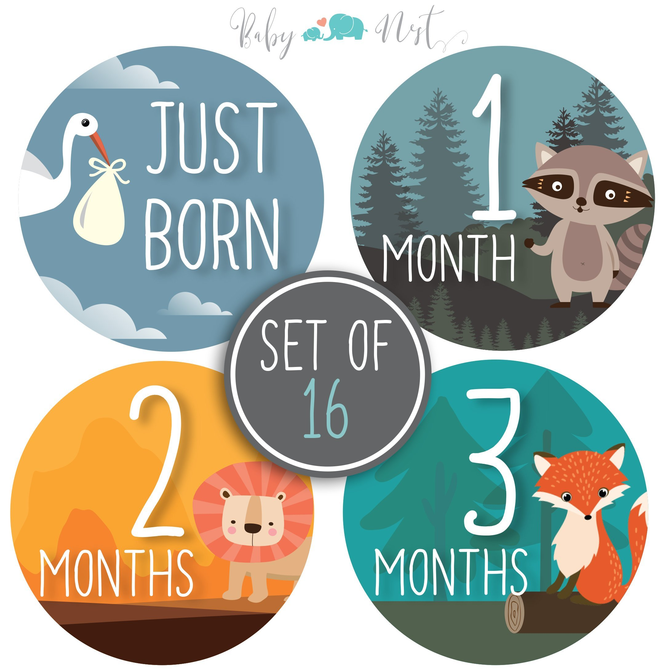 Baby Monthly Milestone Stickers - Set of 16 Uniquely Designed Woodland Animals for Boys or Girls First Year - Great for Baby Shower Registry and Photo Memories Keepsake