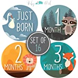 Baby Milestone Stickers by Baby Nest Designs - Set of 16 Baby Monthly Stickers. Cute Woodland Animals Each Month Stickers for