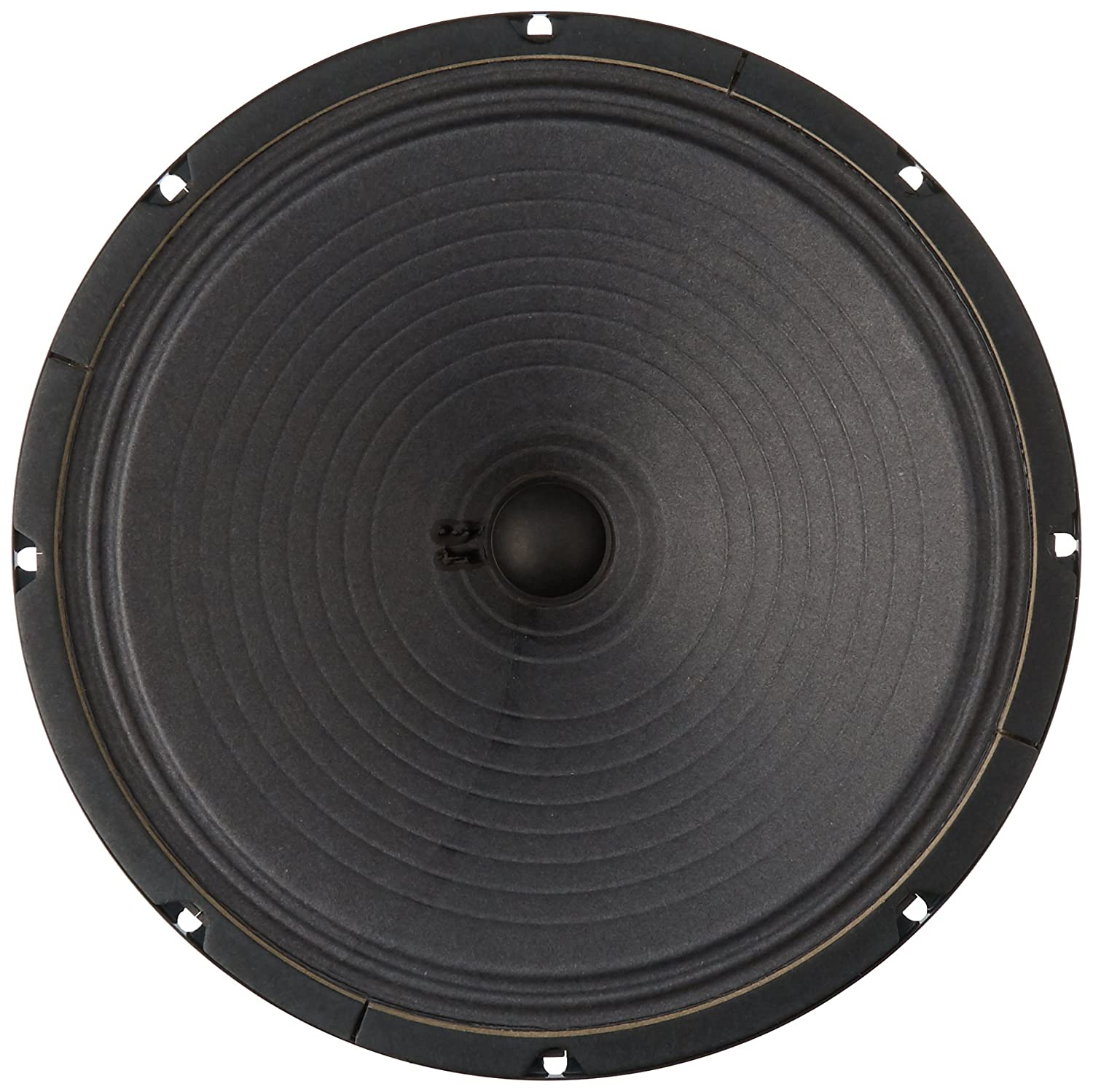 Amazon.com: Jensen Vintage P12R8 12-Inch Alnico Speaker, 8 ohm: Musical  Instruments