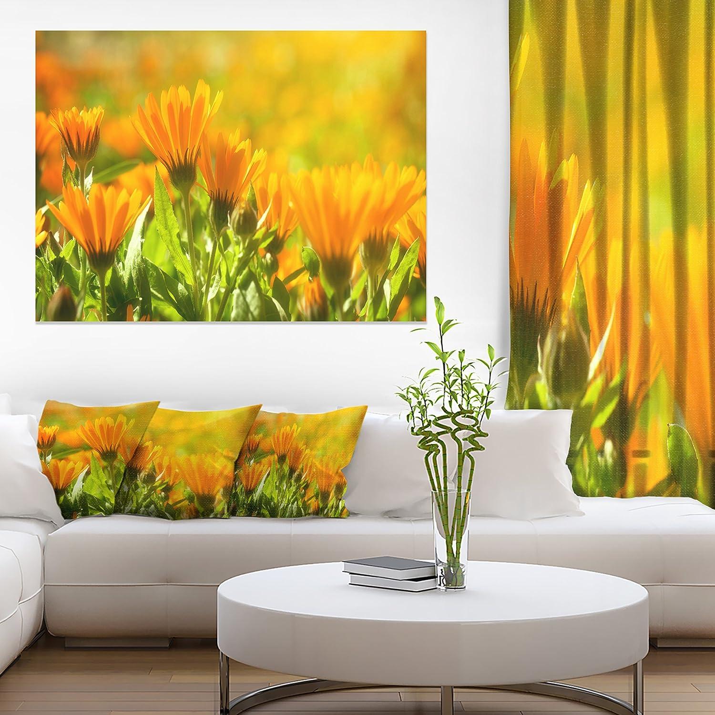 Amazon.com: Orange Marigold Flowers in Sunlight Floral on Canvas Art ...