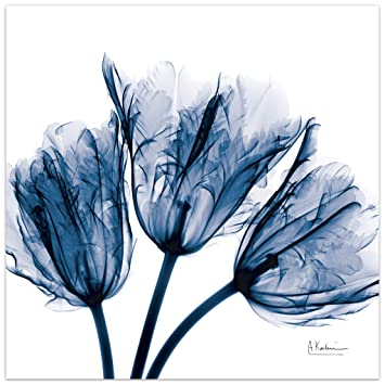 Empire Art Direct Blue Tulip X,Ray Flower Wall Art on Frameless Free  Floating Tempered Glass Panel Ready to Hang,Living Room,Bedroom & Office,  24 in.