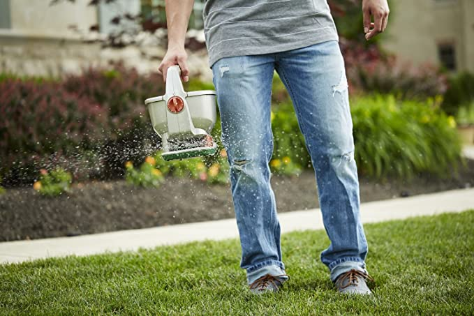 Scotts Wizz Hand-Held Spreader with EdgeGuard Technology - Apply Grass  Seed, Fertilizer or Ice Melt - Battery Powered - Designed for Use Year  Round -
