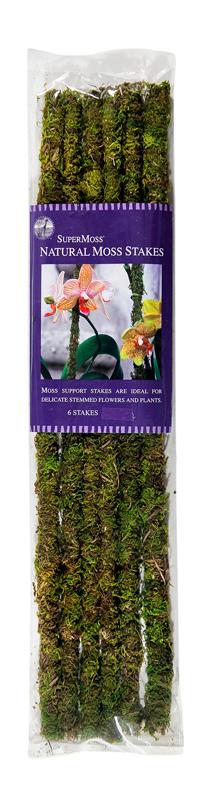 Super Moss 22050 Moss Covered Stakes, Green, 18-Inch Height