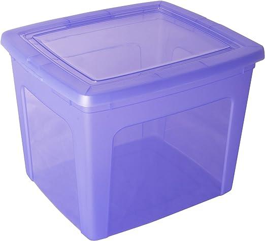 Caja de almacenamiento, caja de almacenaje, caja plastico Morado, caja con tapa, caja organizadora, caja apilable 30 litros - 30 Litros: Amazon.es: Hogar