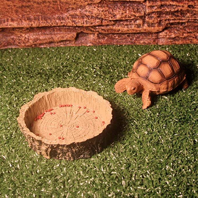 KinTTnyfgi Suministros de Acuario Placa de alimentación de Reptiles de Resina para Lagarto de Tortuga de Serpiente Cuenco de alimentación de Platos de Agua ...