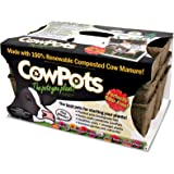 CowPots CP36-12 SixCell Flats, 3-Pack