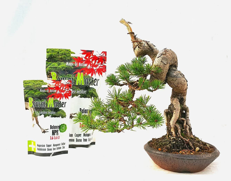 Bonsai Master Fertilizer Complete 500g Amazon De Garten