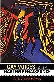 Gay Voices of the Harlem Renaissance (Blacks in the Diaspora)