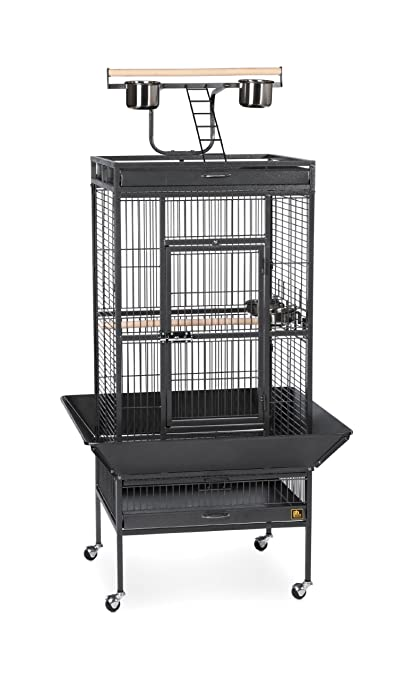 f939aded8d9a Prevue Pet Products Wrought Iron Select Bird Cage Black Hammertone 3151BLK