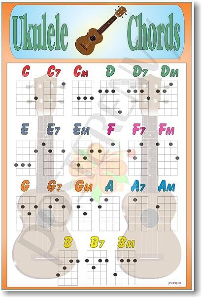 Amazon Ukulele Chords Educational Music Poster Prints Posters